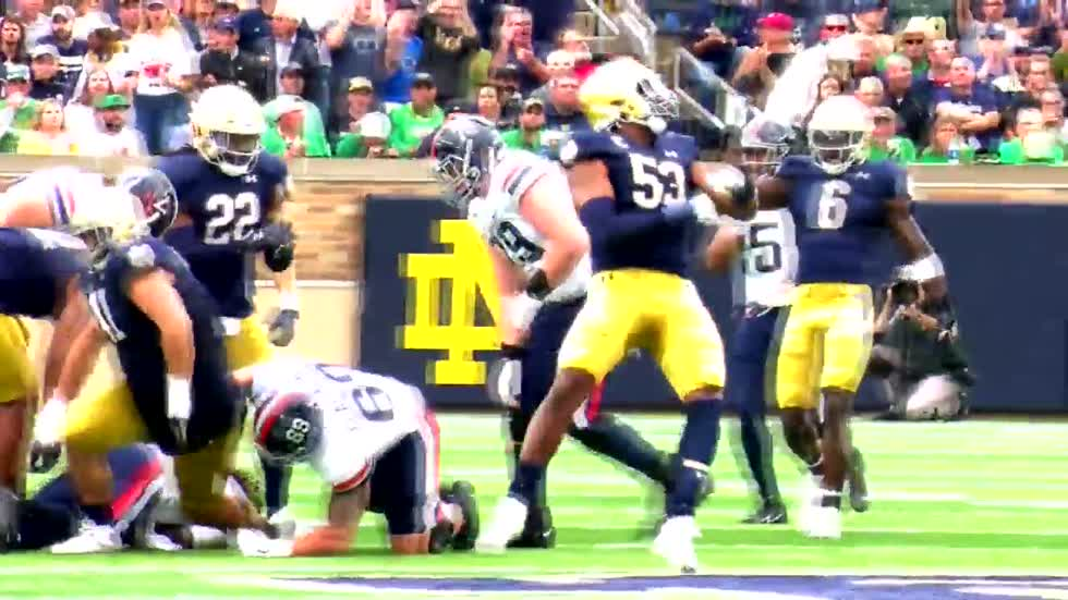 A look back at Notre Dame's 2019 season so far